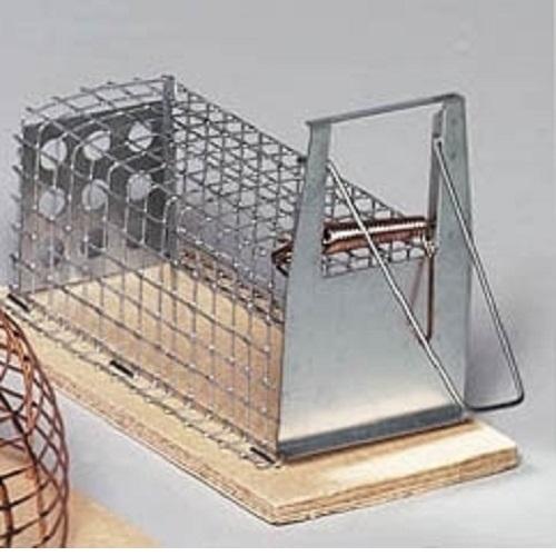 deufa drahtkastenfalle luna maus lebendfalle m use. Black Bedroom Furniture Sets. Home Design Ideas